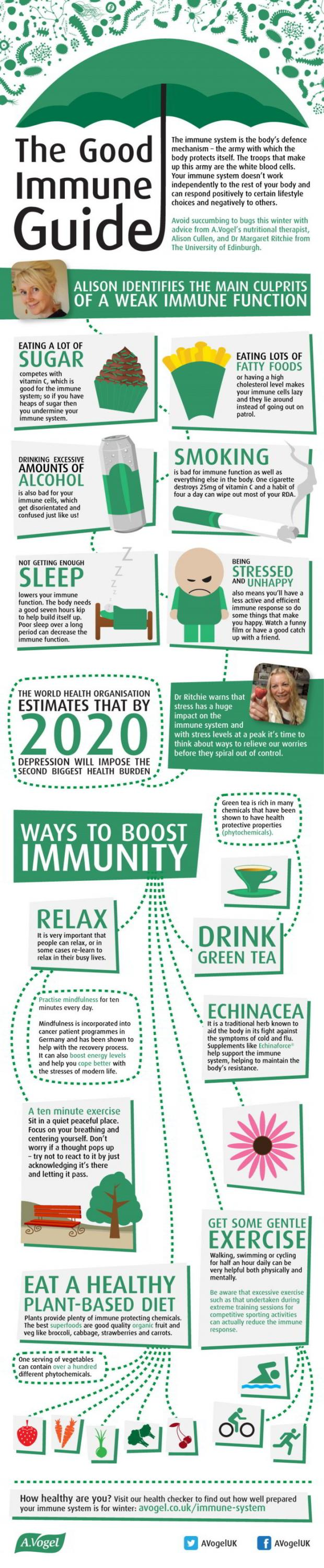 The Good Immune Guide
